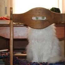 Aš tave stebiu!